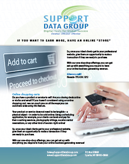 5-Support-Data-Inc-Flyer---Online-Shopping-Cart
